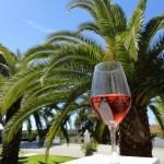 Wine tasting in Alentejo